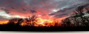 Beamer's Kansas Deer & Turkey Hunts | Nebraska Deer & Turkey Hunts