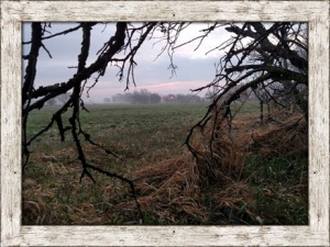 Beamer's Kansas & Nebraska Turkey Hunting